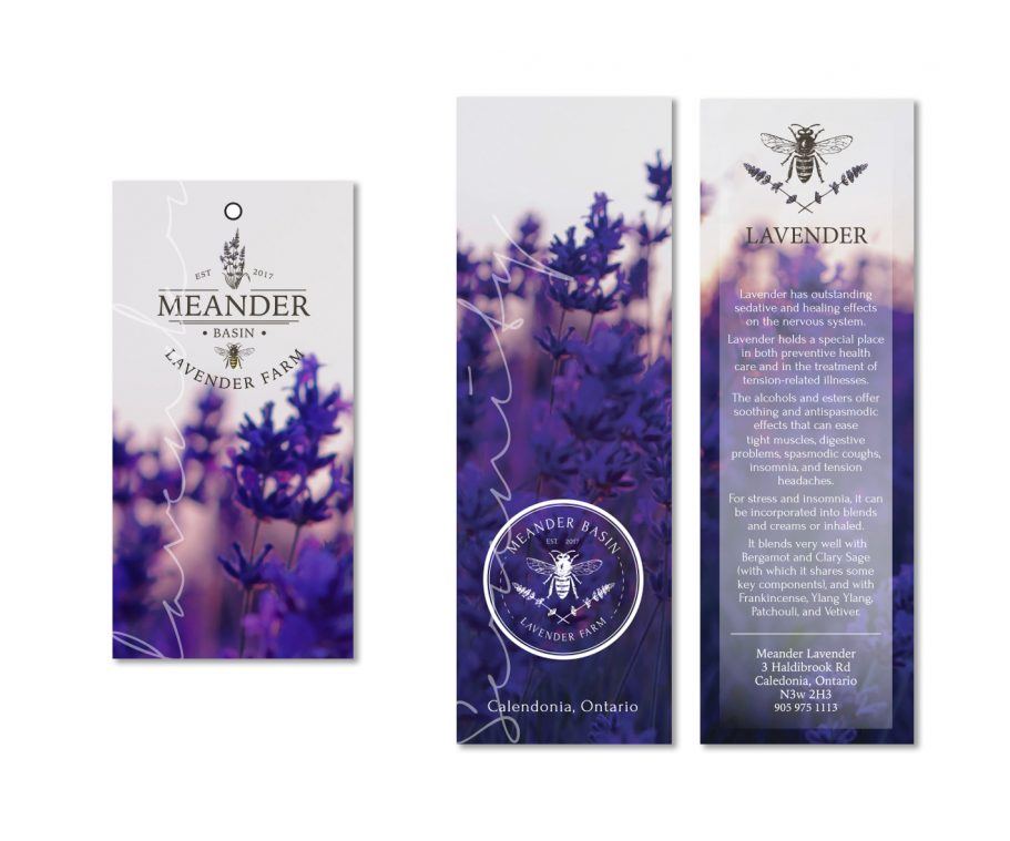 Bee and lavender farm logo design and business branding by Tasmanian graphic designer Lara Hardy from Billie Hardy Creative