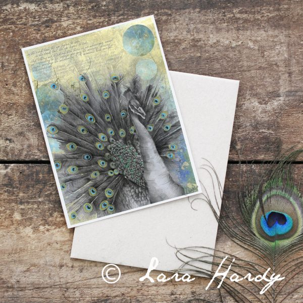 Bohemian Peacock Nursery Illustrated Art card by Tasmanian artist Lara Hardy From Billie Hardy Creative