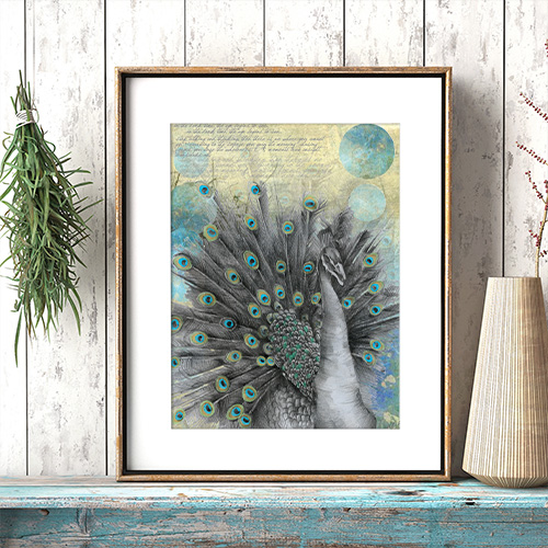 Peacock Bohemian Illustrated Art Print