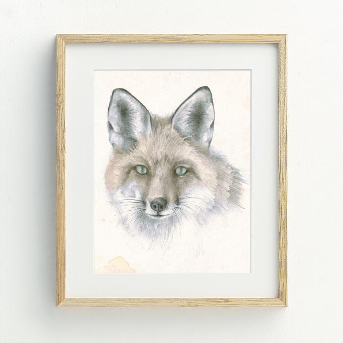 Fantastic Mrs Fox Hand Drawn Illustration by Billie Hardy Creative