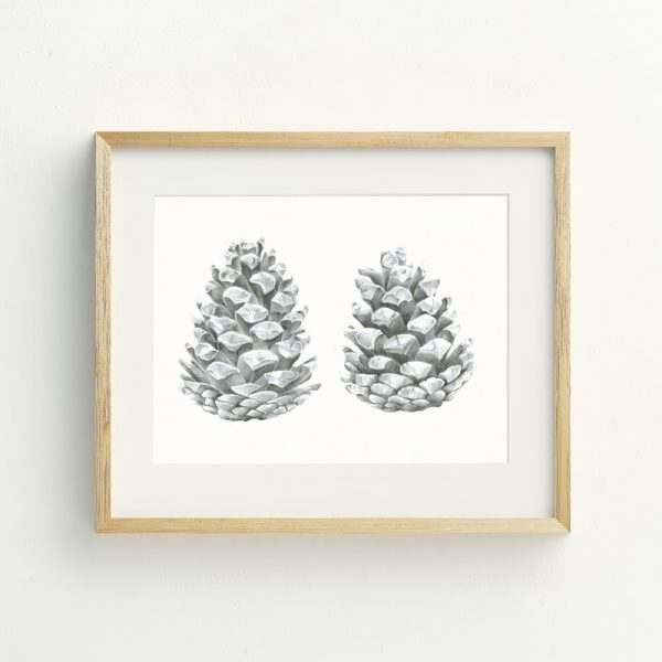 Pinecone nature hand drawn illustrated Art Print by Tasmanian artist Lara Hardy From Billie Hardy Creative