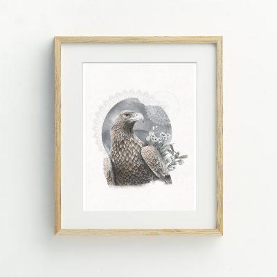 Tasmanian Wedge tailed Eagle Art Print by Billie Hardy Creative