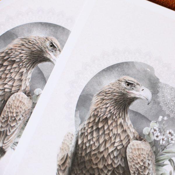 Tasmanian Wedge tailed Eagle Illusterated Art Print by Billie Hardy Creative